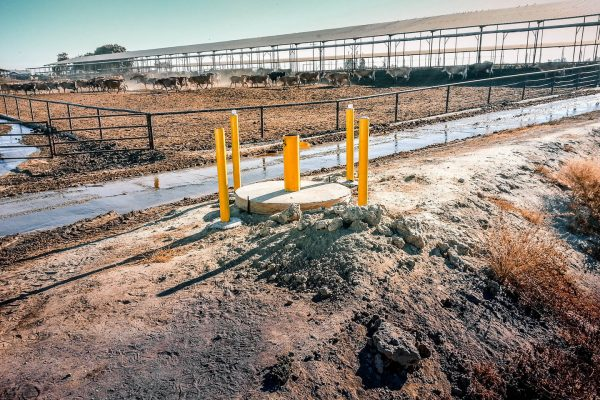 Representative Groundwater Monitoring on California's Central Valley Dairies